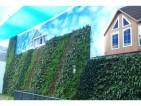 苏州实验小学300平方ballbet体育平台墙