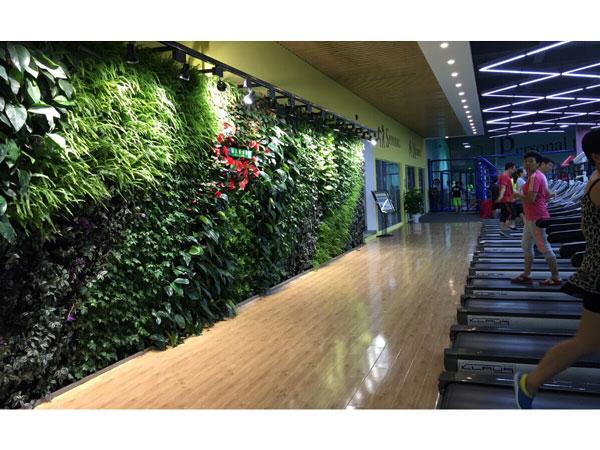 昆山嘉美健身中心ballbet体育平台墙