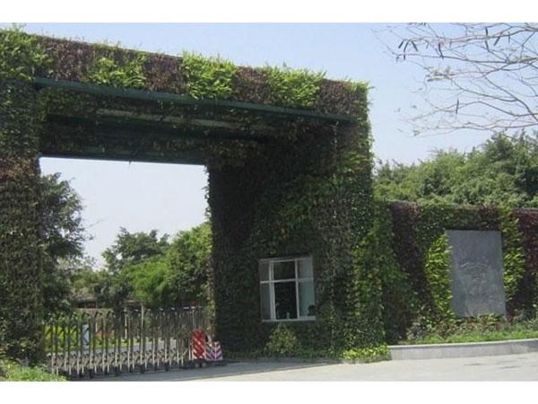 深圳华侨城ballbet体育平台墙
